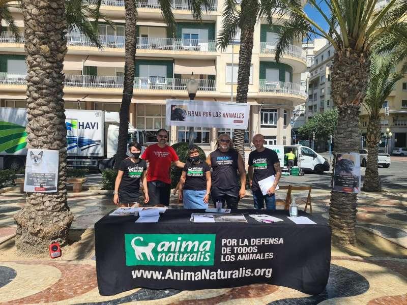 Un momento de la recogida de las firmas en Alicante, en una fotografía facilitada por la organización.