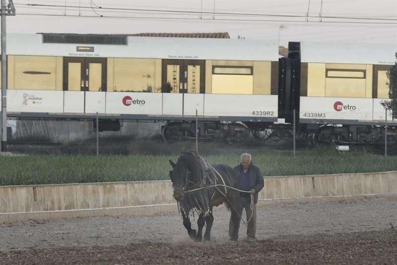 Un agricultor ara de forma tradicional, sobre una tabla y tirado por un caballo, un campo de cultivo ubicado en la huerta de Alboraya, con el metro pasando a su espalda. EFE/ Kai Försterling/Archivo