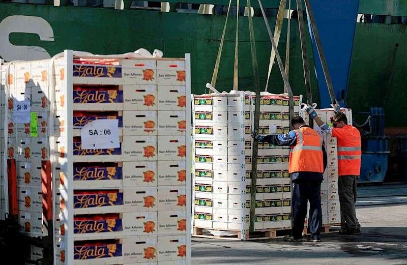 Imagen de archivo de un cargamento de clementinas en el puerto de Castellón. EFE/Domenech Castelló