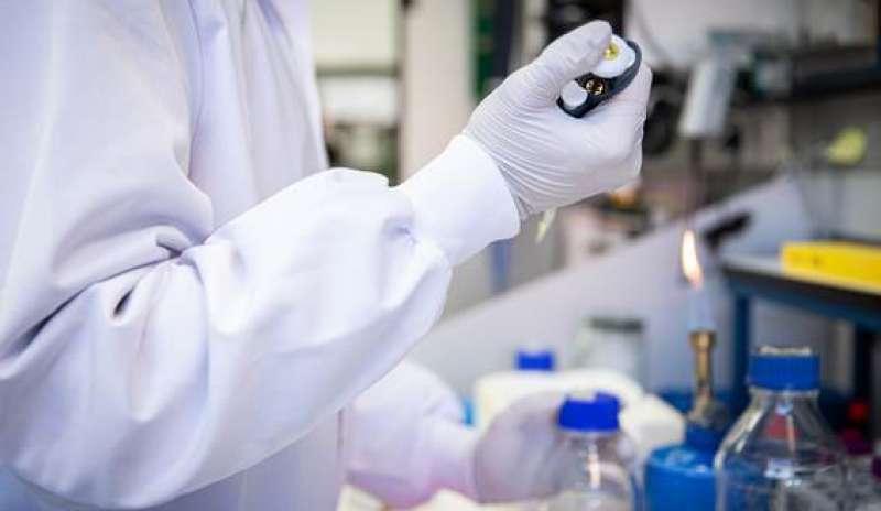 Investigadores trabajan en un laboratorio