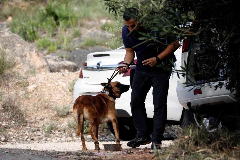 La Guardia Civil, trabajando estos días sobre el terreno en búsqueda del cadáver de Marta Calvo. EFE/Ana Escobar