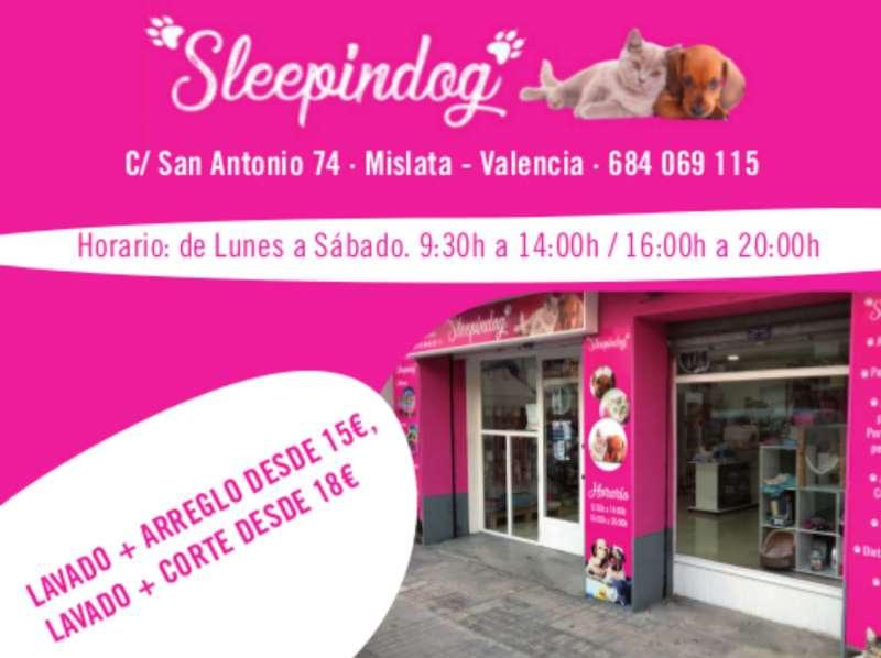 Publicidad de Spleepindog de Mislata. EPDA