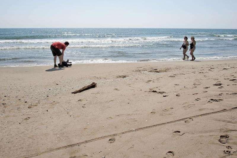Fallece ahogado un bañista en una playa de Calpe. Fotografía de archivo de una playa de la provincia de Valencia. EFE/Archivo