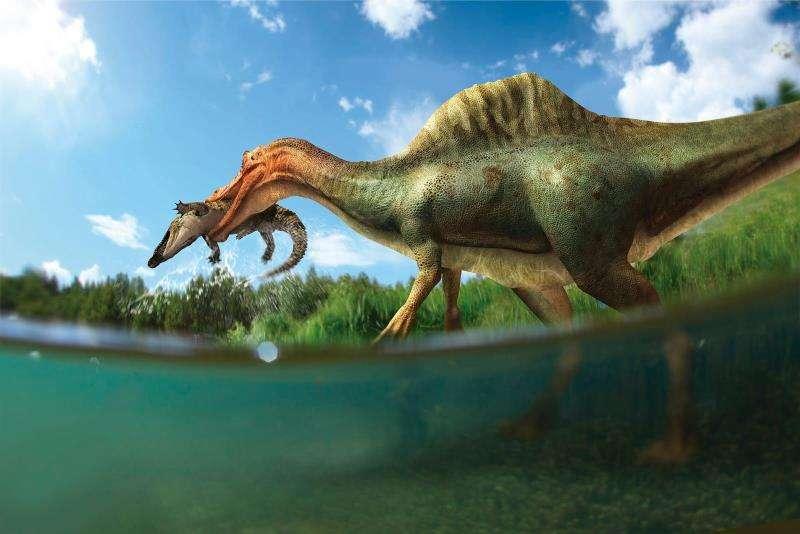 Una simulación del aspecto que podría tener el dinosaurio recientemente descubierto. EFE