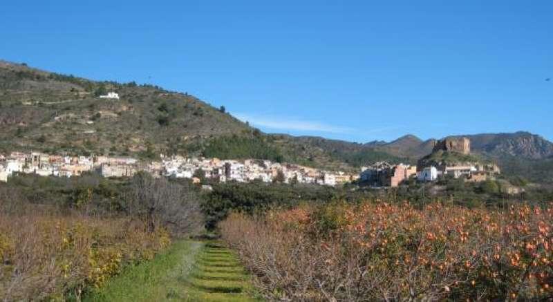 Castellnovo, un referente para los jóvenes músicos