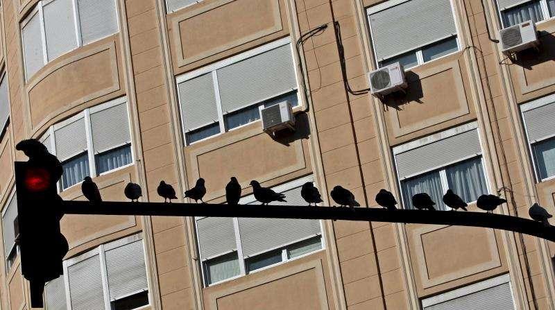 Un semáforo en la ciudad de València. EFE/Archivo