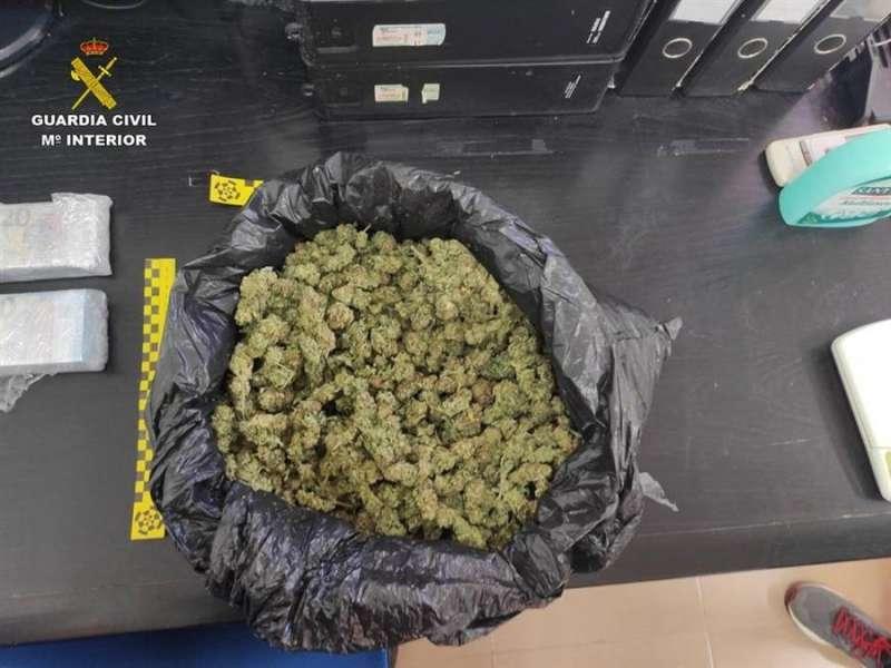 Imagen cedida por la Guardia Civil de los cogollos de marihuana incautados. EFE