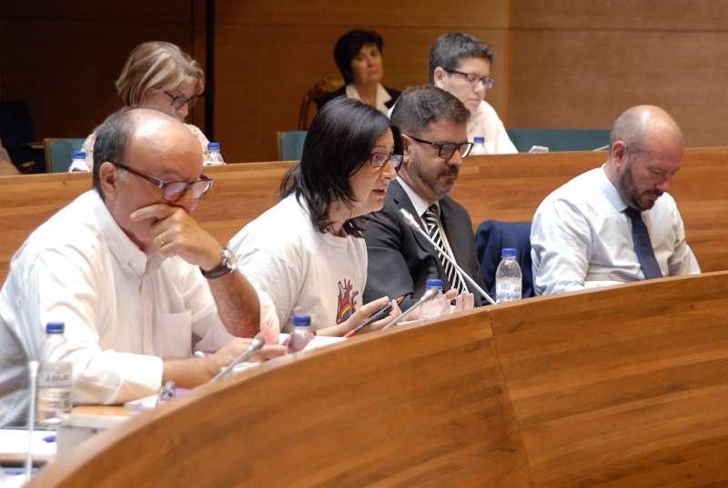 La diputada de Memòria Històrica, Rosa Pérez Garijo, durant el Ple celebrat hui a la Diputació de València..