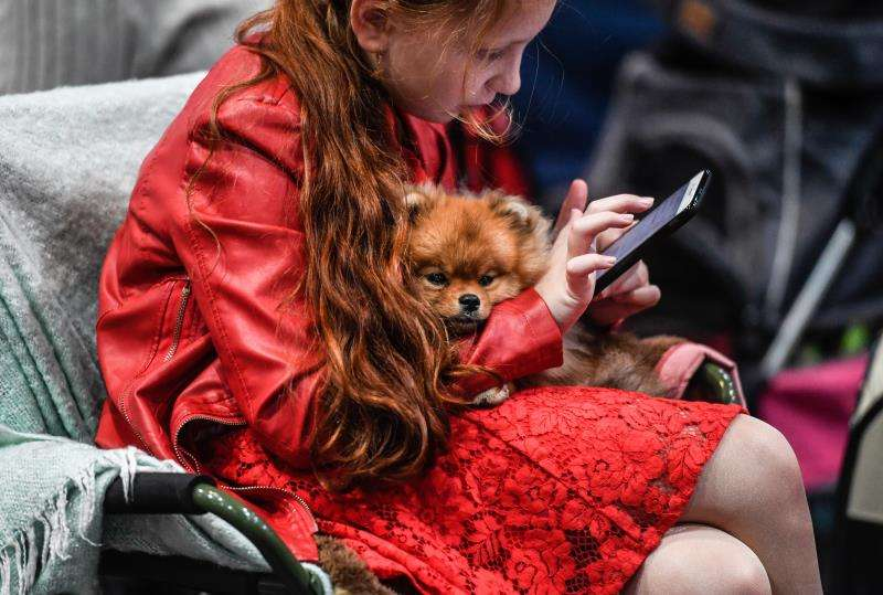 Una joven escribe un mensaje en su teléfono. EFE/Archivo