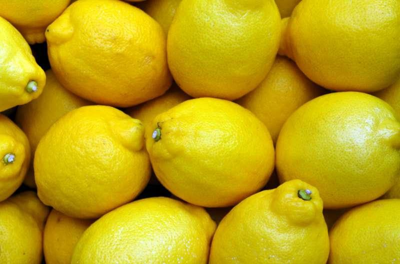 Limones. FOTO MERCADONA