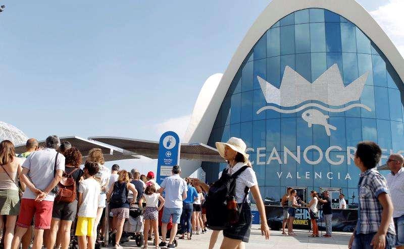 Un gran número de personas aguarda para entrar al Oceanogràfic de València, tras el incendio que se declaró ayer en una torre. EFE