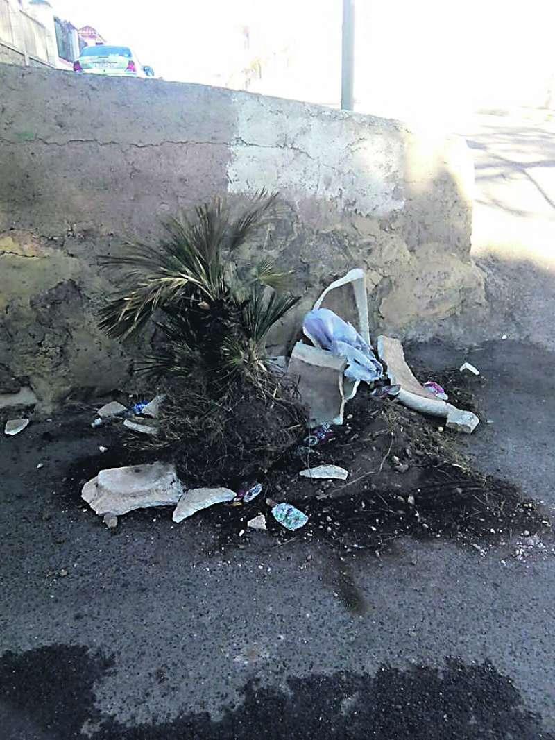 Macetero roto en la entrada del camino de Beselga. EPDA