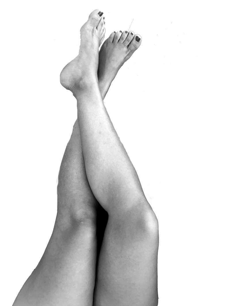 Les cames de Laia. EPDA