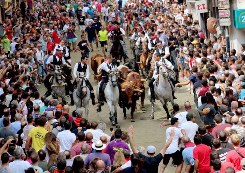 Tercera entrada de toros y caballos