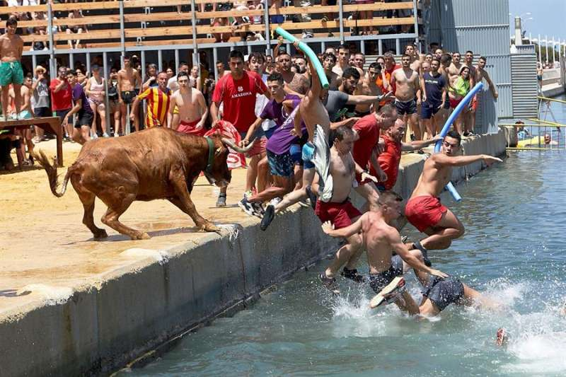 Unos mozos saltan al agua durante la celebración en Dénia (Alicante) de su tradicional festejo