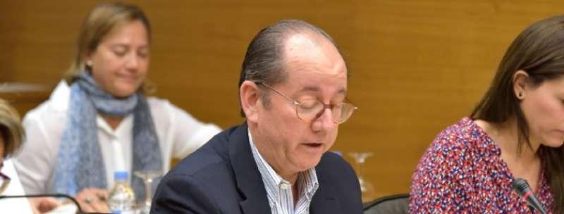 El Portavoz de Universidad y Cultura del Grupo Parlamentario Popular en Les Corts, Miguel Ángel Mulet
