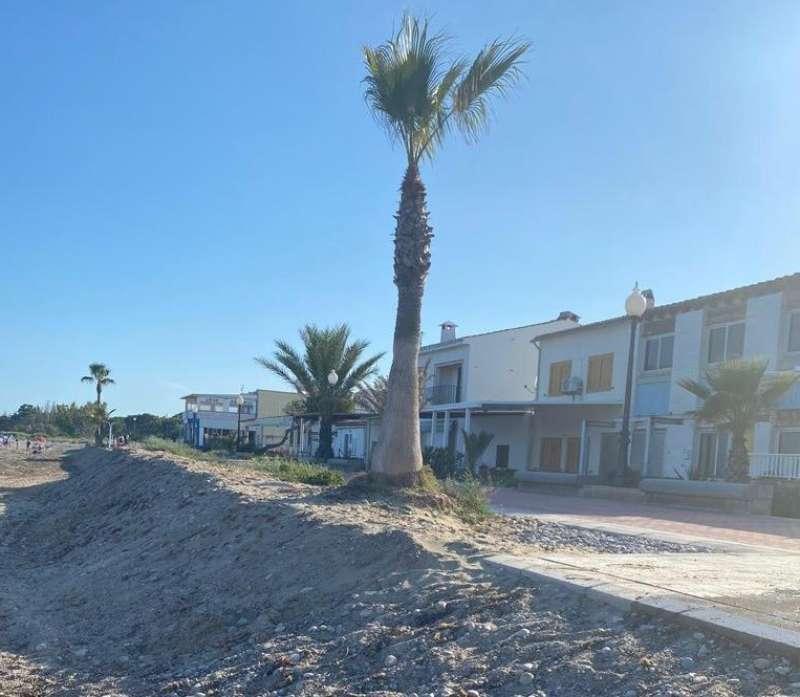 Playa de la Ribera de Cabanes/EPDA