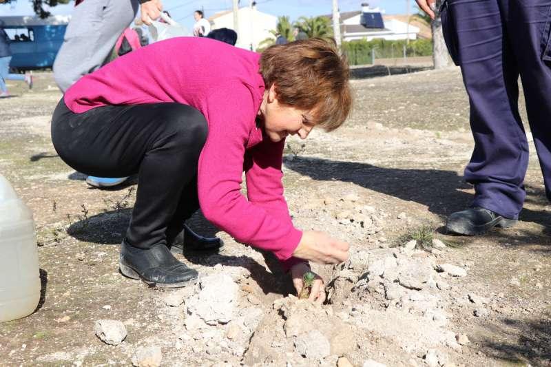 Una de las participantes plantando árboles. / EPDA