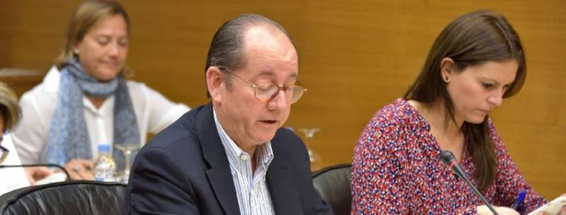 El portavoz de Cultura del Grupo Parlamentario Popular en Les Corts, Miguel Ángel Mulet