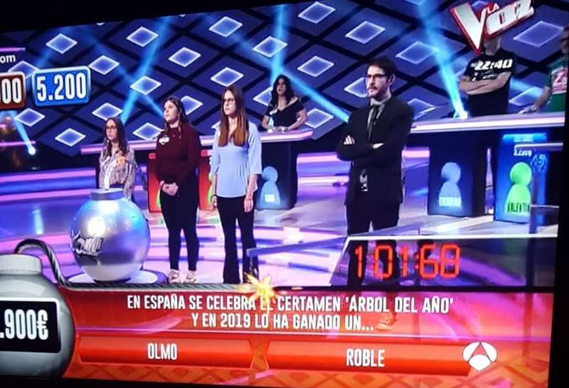 El olmo de Navajas en el programa Boom de Antena 3