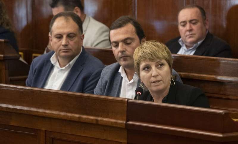 Elena Vicente-Ruiz, diputada del PP