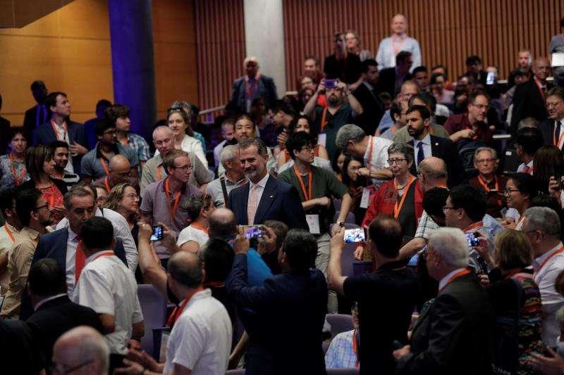 El Rey Felipe VI a su llegada al Palacio de Congresos de València para inaugurar el Congreso Internacional de Matemática Industrial y Aplicada. EFE
