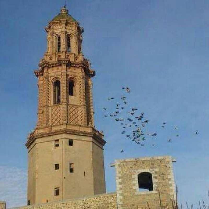 Palomos junto a la torre mudéjar