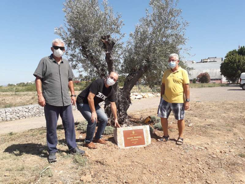 La placa junto al olivo