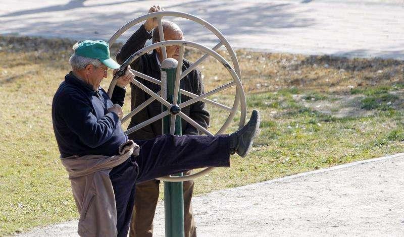 Dos jubilados en uno de los aparatos de gimnasia para personas mayores instalados en un parque público de València. EFE/Archivo
