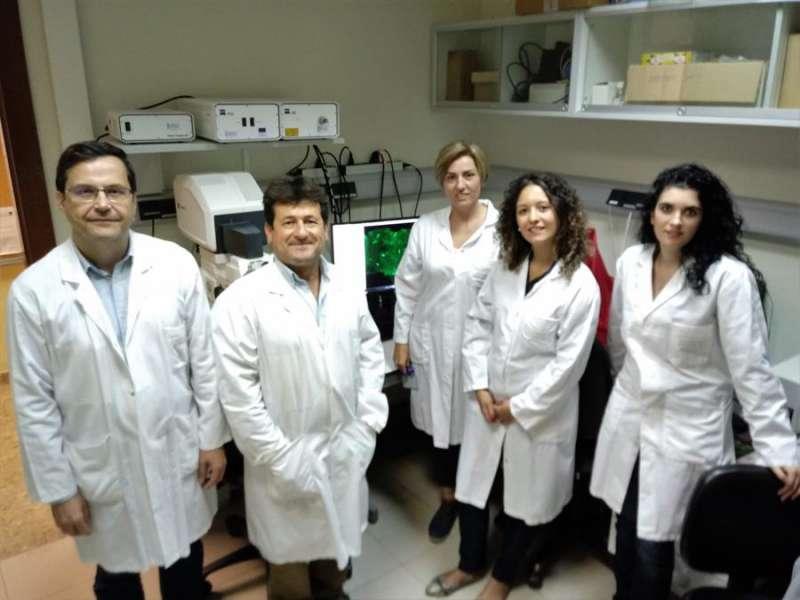 Investigadores participantes en el estudio, en una imagen facilitada por el INCLIVA. EFE/INCLIVA