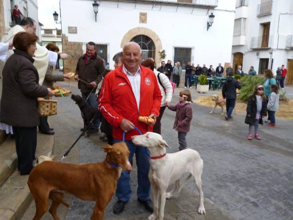 Dos perros en la bendición de animales de Algar de Palancia. EPDA