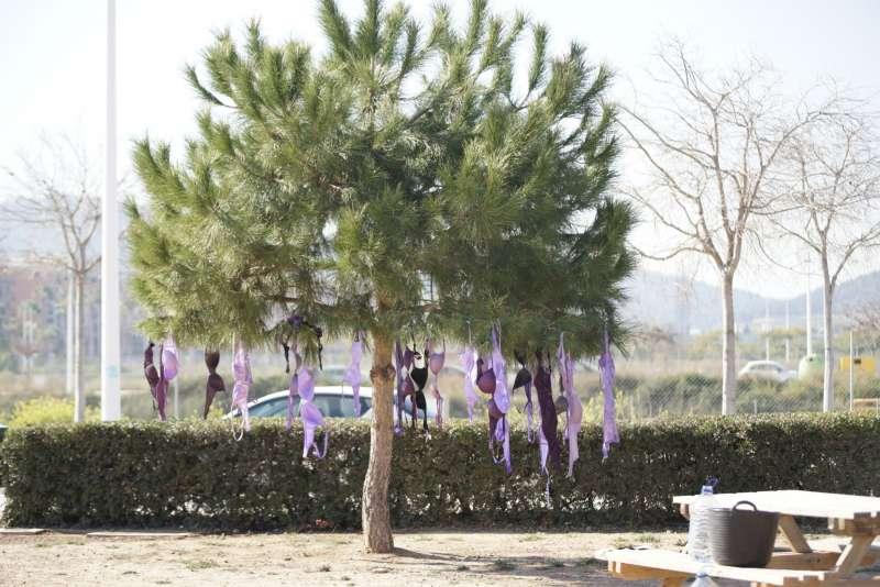 Sujetadores morados colgados de un árbol. EPDA