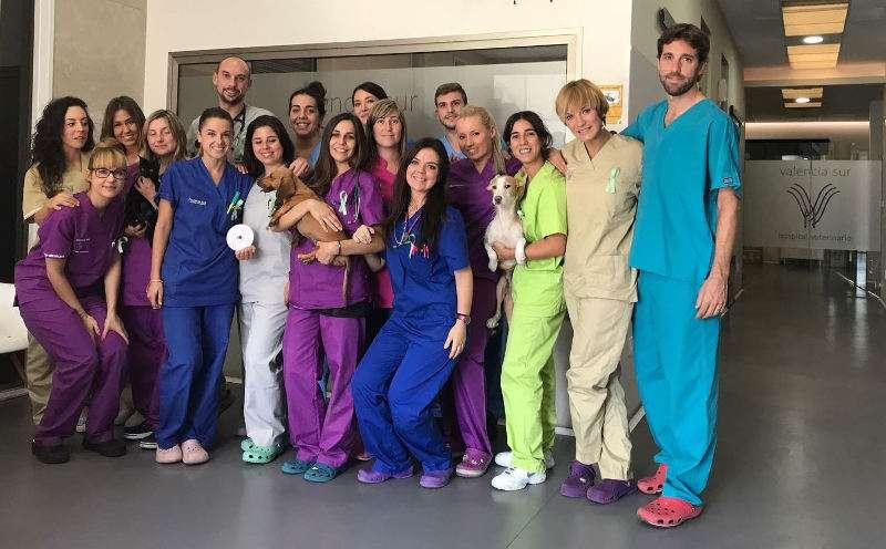Equipo del Hospital Valencia Sur de Silla. EPDA