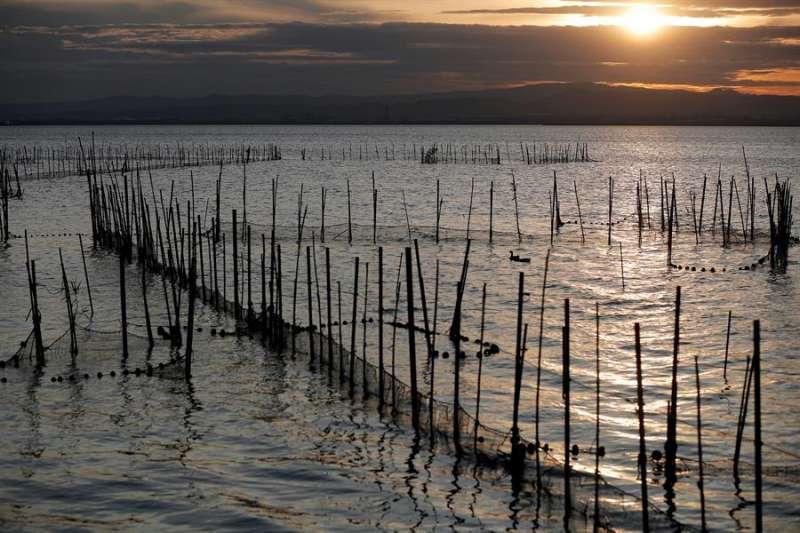 Cañas y barro, redes de pesca y remanso de paz en un atardecer en L