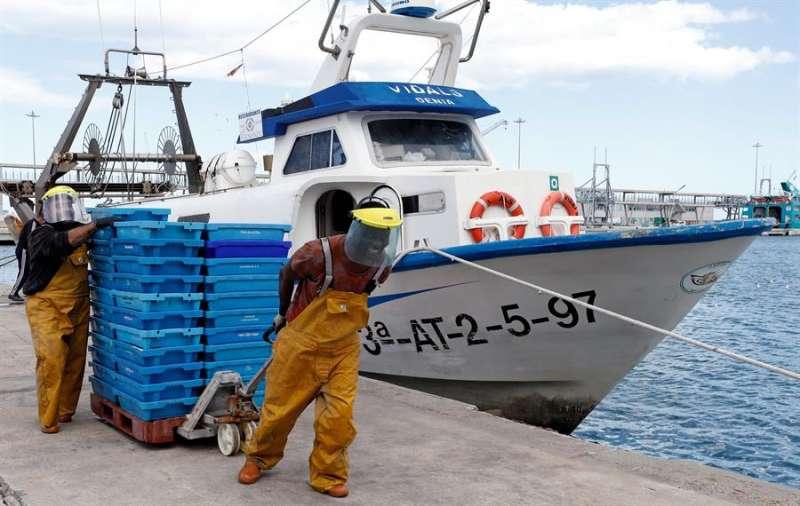 Dos marineros descargan el pescado capturado, en la lonja de Denia (Alicante) ,tras el parón decretado por el estado de alarma. EFE