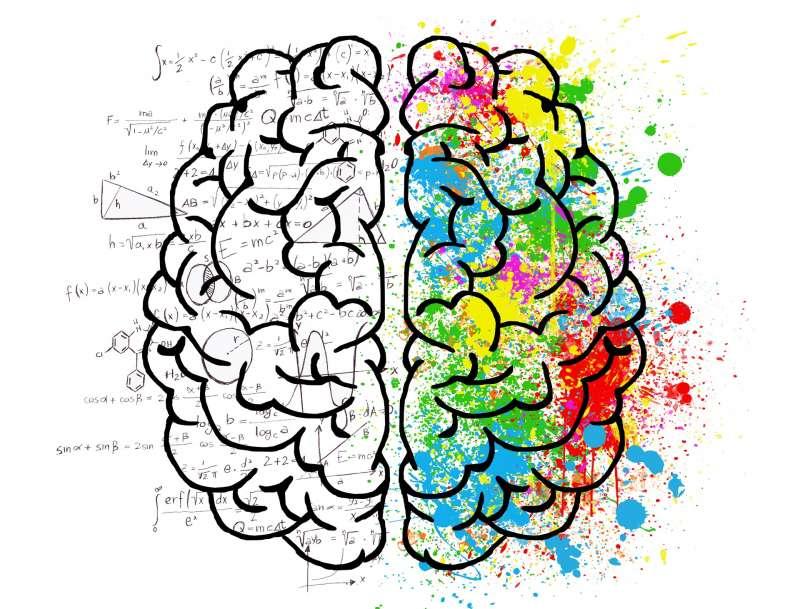 Equilibrio cerebral valencia