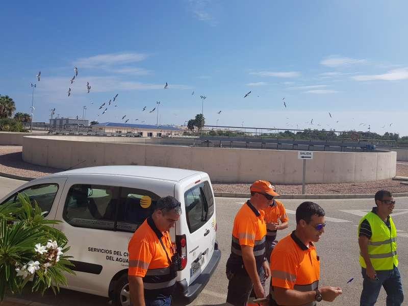 Trabajadores Hidraqua. EPDA