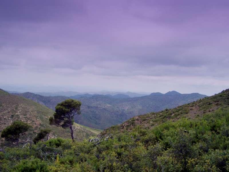 Vistas desde los parques naturales de la comarca. EPDA