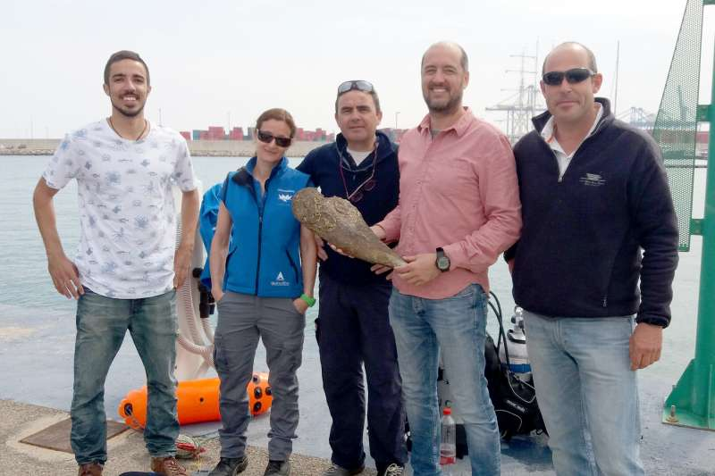 José Tena y José Rafael March (centro), del IMEDMAR, durante la extracción de unos ejemplares de nacra en el Puerto de Valencia.