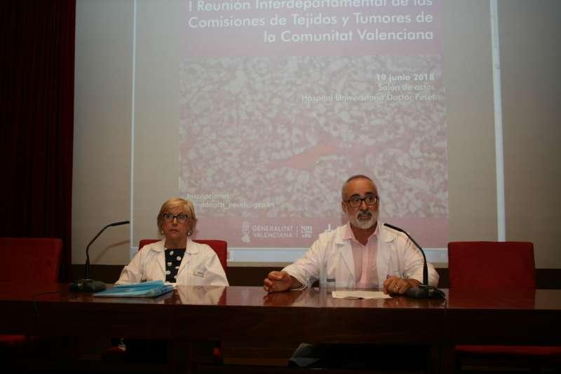 I Reunión Interdepartamental de las comisiones de tejidos y tumores