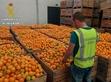 El peri�dico de aqu� -Naranjas intervenidas. FOTO: GC