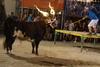 El peri�dico de aqu� -Imatge del bou embolat. FOTO: EPDA