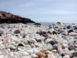 El peri�dico de aqu� -Imagen de la playa. FOTO: GVA