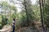 El peri�dico de aqu� -Una de las zonas verdes del muncipio de Torrent. //EPDA