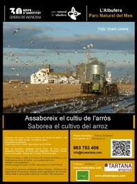 El peri�dico de aqu� -Imagen promocional. FOTO: EPDA